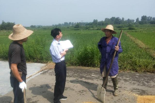 合肥蜀山区多措并举推进水毁农业区域重建工作
