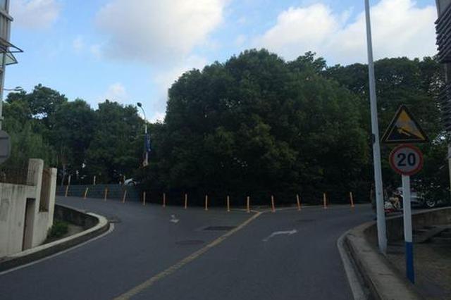 8月9日起 合肥新开D195路 调整T11路