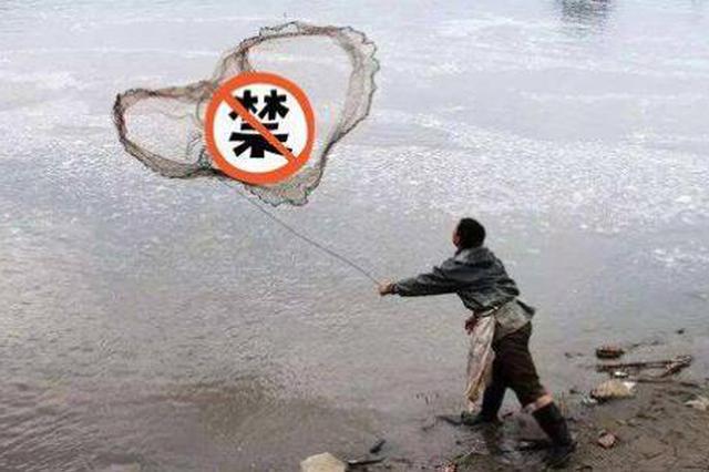 """省市场监管局公布""""长江禁捕打非断链""""专项行动典型案例"""