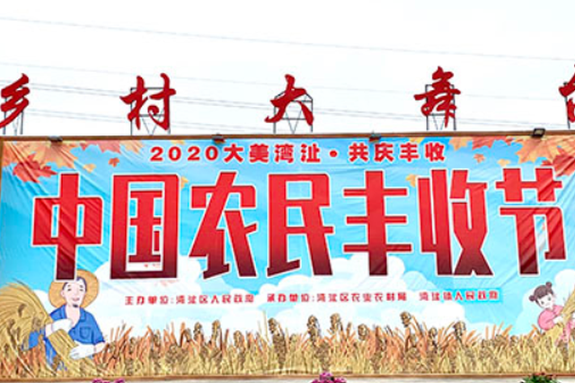 芜湖湾沚区:载歌载舞 潮玩丰收节
