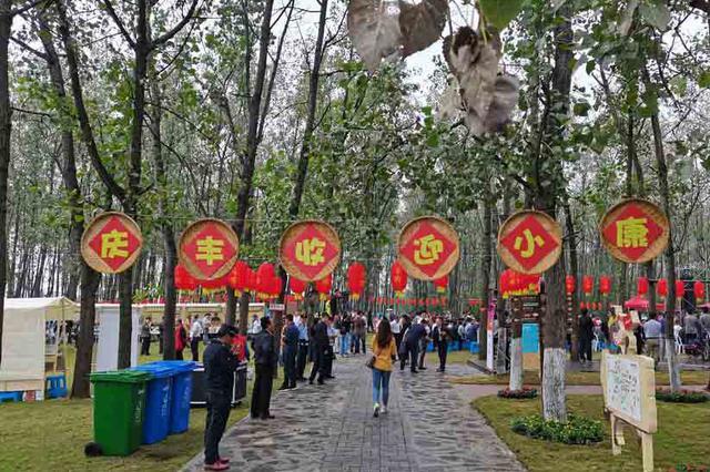 合肥农民丰收节在长丰县马郢社区举行