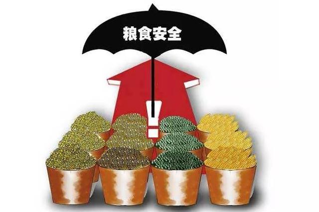 安庆开展全链条节粮减损保障粮食安全