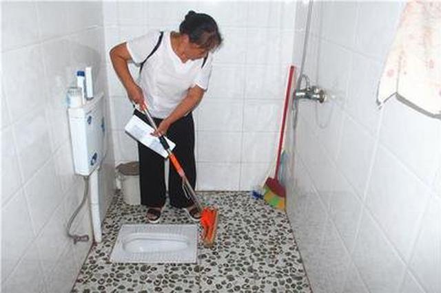 """桐城:""""厕所革命""""让15万多农户用上卫生厕所"""