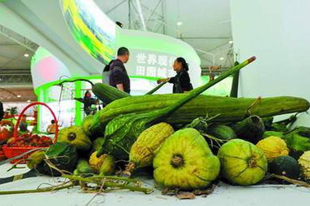 阜阳260多种名优农产品组团参展农交会