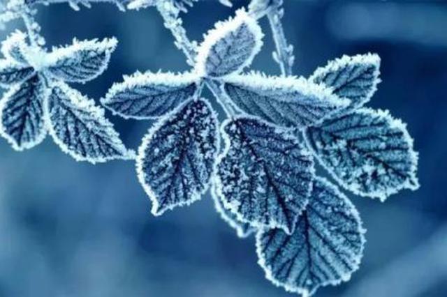 冷空气将影响安徽 部分地区或出现霜冻