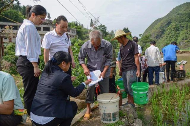一个贫困村的产业发展之路