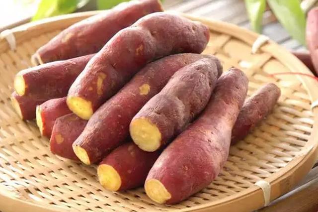 世界冠军田头直播卖红薯
