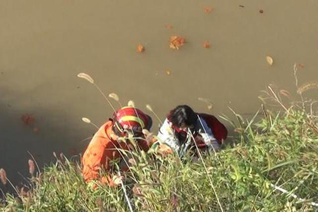 女孩岸边捡手表不慎掉入河中 合肥消防紧急救援
