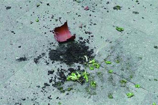 花盆从天而降 砸瘪路边车顶