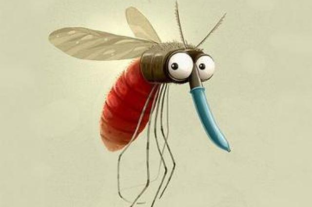 都立冬了 为啥还有蚊子?