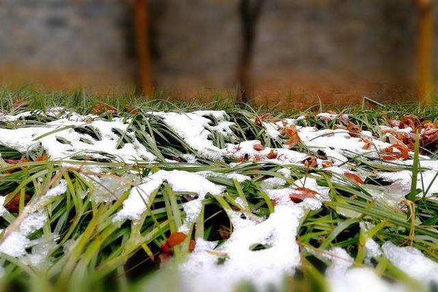 安徽省委书记批示!扎实防范应对此轮强雨雪天气