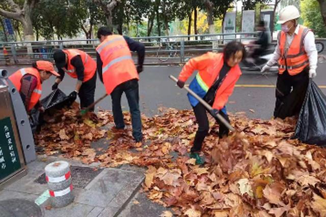 环卫清扫落叶 保障城市整洁