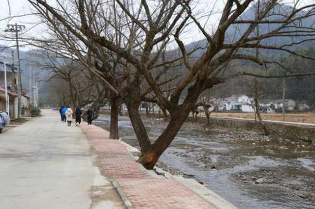 贵池区里山街道:人居环境整治 让乡村美起来
