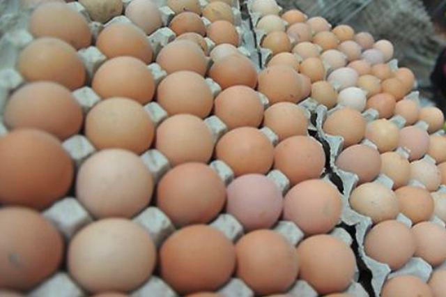 """鸡蛋价格重回""""5元时代"""""""