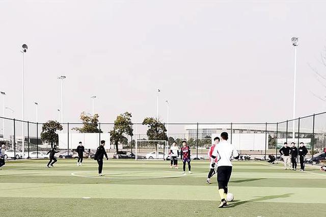 安庆大力推进社会足球场建设 兴建社会足球场76片