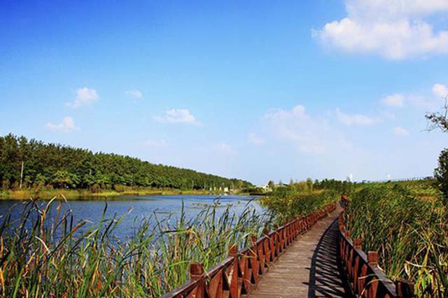 """合肥滨湖景区设置首个""""爱心小站"""""""