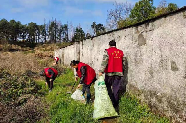 """黟县:""""四个坚持""""全面推进农村人居环境整治"""