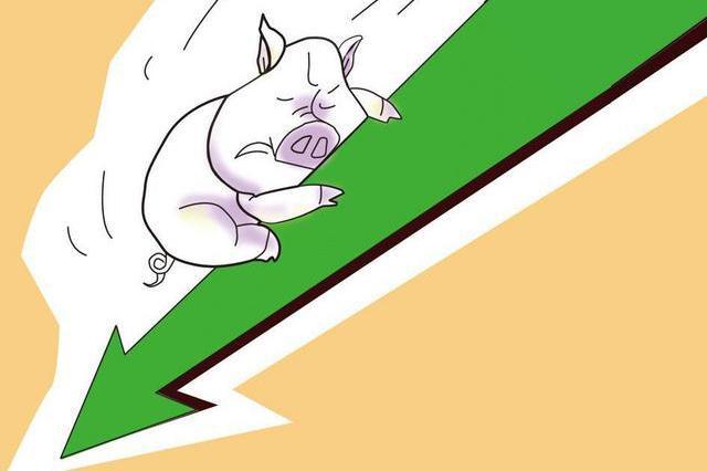 猪肉同比价跌近三成 安徽居民生活必需品价格稳中有降