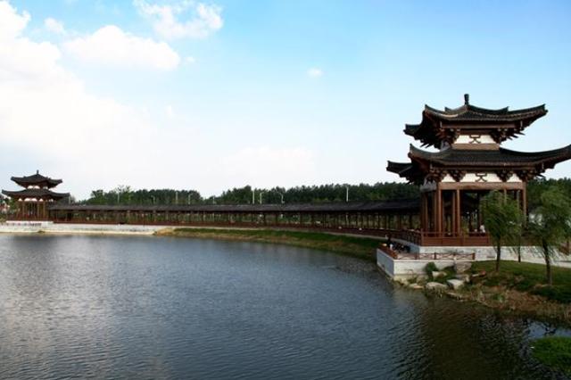 程丽华在泗县走访调研