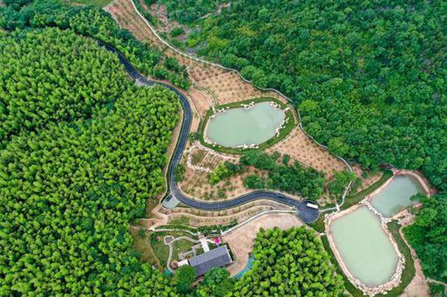 安徽巢湖:美丽乡村 诗画大岭