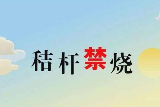 """加强秸秆禁烧 积极服务""""三夏"""""""