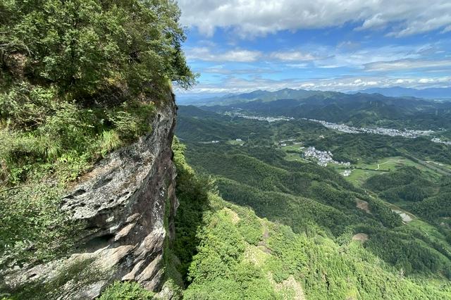 """黟县渔亭镇:林业产业点绿成""""金"""""""
