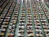 安徽有41.9万人参加2018年高考