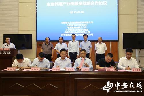 安徽为生猪产业链上下游113家企业和养殖户共计担保贷款10578万元