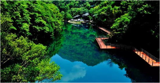 祁门县牯牛降景区(图片来源:牯牛降风景区公众号)