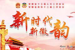安徽省政协十二届二次会议