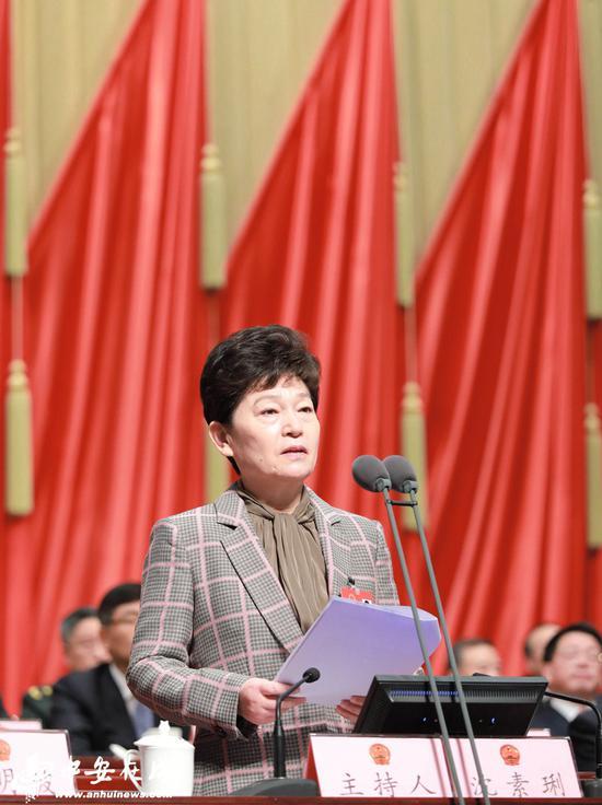 省人大常委会副主任沈素琍主持大会。(摄影 许梦宇、刘玉才)