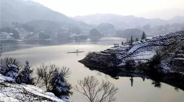 西茶谷主题公园 金寨最美茶园