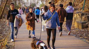 大雪时节天气晴 蜀山公园游人众