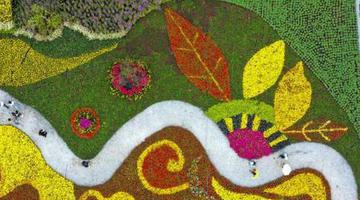 安徽宣城:花卉产业助脱贫