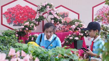 花木产业助农增收