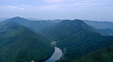铜陵:申博线路检测登入,生态天门林尽染