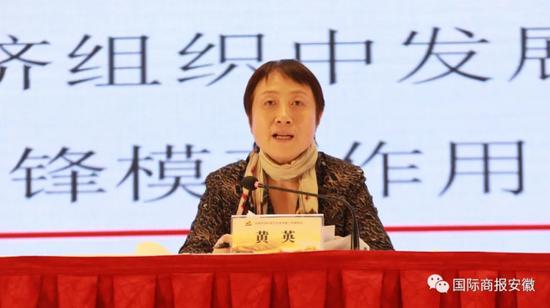 安徽省商务厅党组成员、副厅长黄英主持会议并讲话