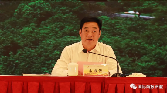 肥西县委书记金成俊致辞