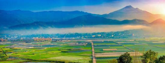 泗县:引导各类人才向乡村振兴一线流动