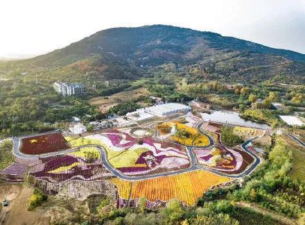 米粒花世界 图源:珠城文旅