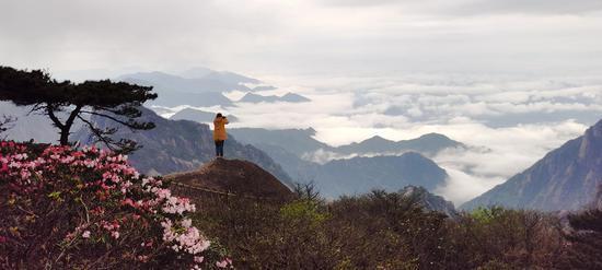 拍摄于黄山鳌鱼峰(李金刚 摄)