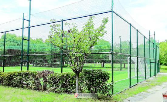 阜城三角洲公园北区一座新建的社会足球场
