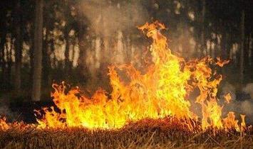 安庆市秸秆禁烧重点时段延长1个月