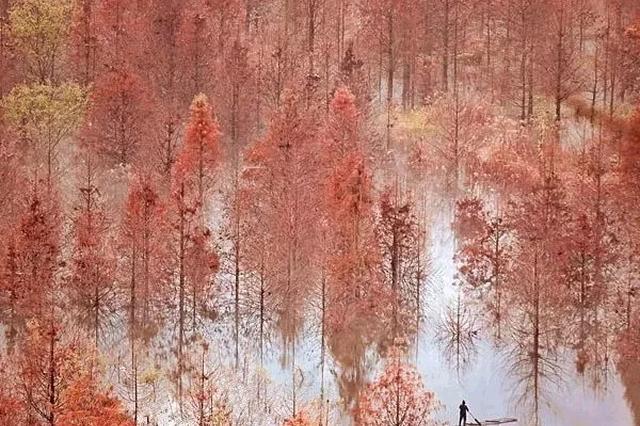 诗与远方 安徽秋天最值得去的地方