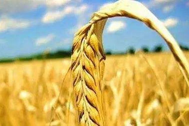 安徽6个县区获国家首批扶持发展