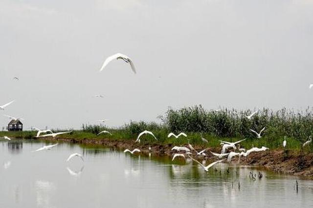 黄山保护生物多样性启动二轮合作