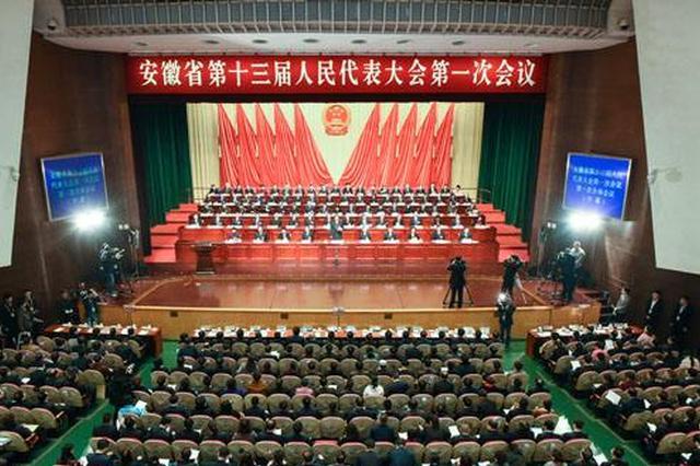 省十三届人大一次会议合肥代表团审议《政府工作报告》