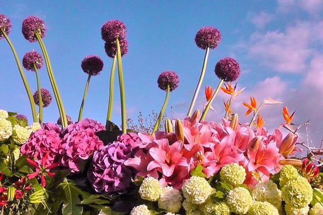 3月中国最美的10个赏花胜地 安徽多地上榜
