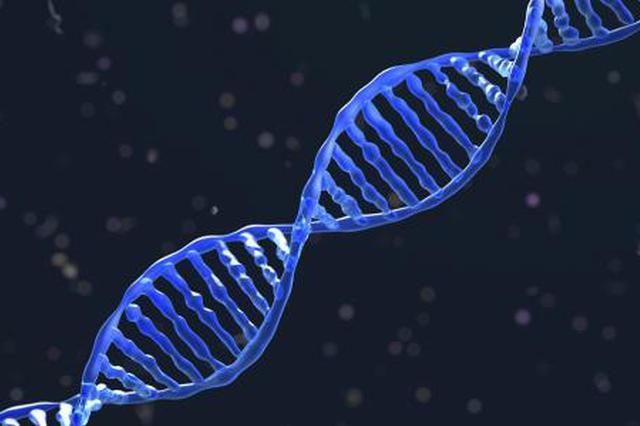 儿子失踪23年 DNA帮一家人团圆