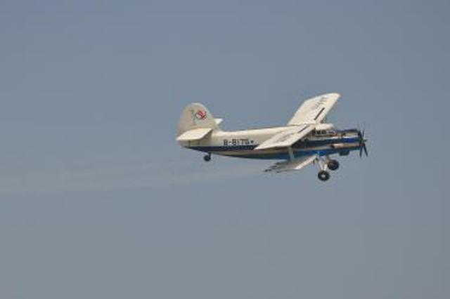 城区不会进行美国白蛾飞机防治 合肥林园部门再辟谣